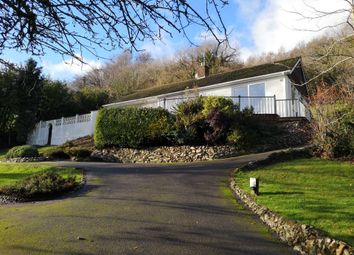Thumbnail 3 bed detached bungalow for sale in Southleigh, Colyton, Devon