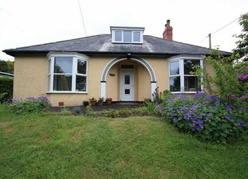 Thumbnail 4 bed detached bungalow for sale in Llandre, Bow Street