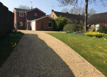 Thumbnail 3 bed detached house to rent in High Street, Sharnbrook