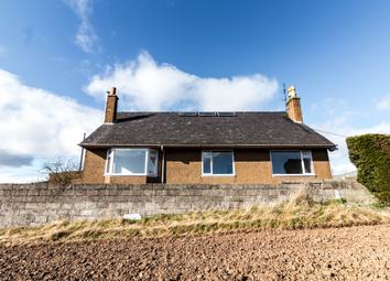 Thumbnail 4 bed farmhouse to rent in Parkview Middle Brighty, Tealing, Dundee