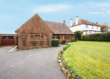 Thumbnail 4 bed detached bungalow for sale in Barnhorn Road, Bexhill-On-Sea, East Sussex
