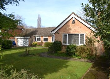 Thumbnail 5 bedroom detached bungalow for sale in New Road, Twyford, Berkshire