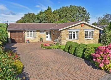 4 bed detached bungalow for sale in Walton Park, Pannal, Harrogate HG3