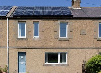Thumbnail 2 bedroom terraced house for sale in Grievestead Farm Cottages, Norham, Northumberland