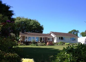 Thumbnail 3 bed detached bungalow for sale in West Hill, Ottery St. Mary