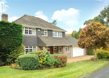 Thumbnail 4 bed detached house for sale in Murray Court, Sunninghill, Berkshire
