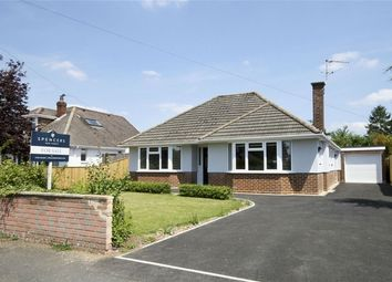 Thumbnail 3 bedroom detached bungalow for sale in Highfield Drive, Ringwood