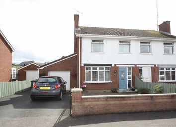 Thumbnail 3 bed semi-detached house for sale in Millbrook Drive, Ballynahinch, Down