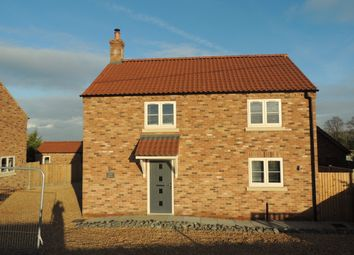 Thumbnail 3 bed detached house to rent in Outwell Road, Nordelph