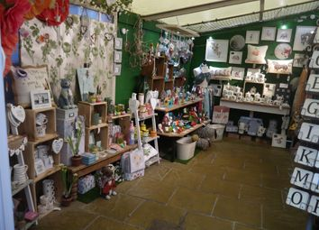 Thumbnail Retail premises for sale in Gifts & Cards YO1, North Yorkshire