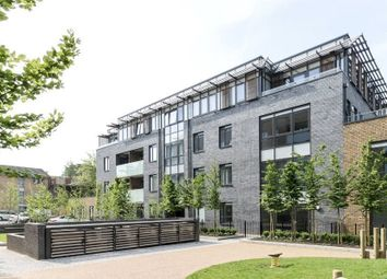 Thumbnail 2 bed flat to rent in Benjamin House, Cecil Grove, St John's Wood