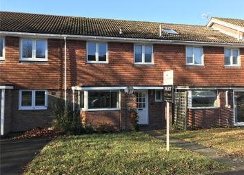 Thumbnail 3 bed detached house to rent in Russet Close, Alresford, Hampshire