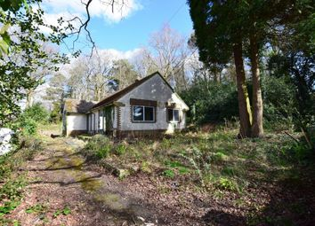 Thumbnail 2 bed detached bungalow for sale in 31 Hutton Road, Ash Vale, Surrey