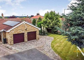 Todwick House Gardens, Todwick, Rotherham, South Yorkshire S26