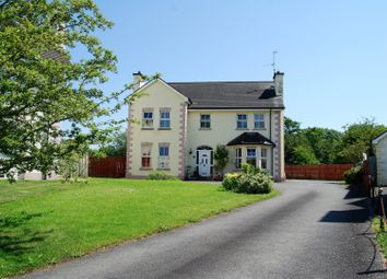 Thumbnail 4 bed detached house for sale in Old Mill Avenue, Armagh