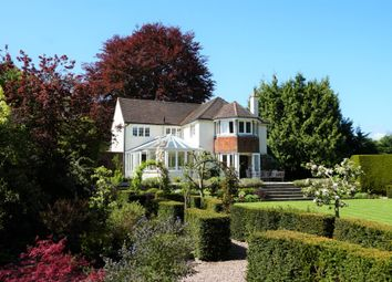 Thumbnail 4 bed detached house for sale in Orchard Road, Shalford, Guildford