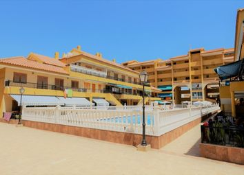 Thumbnail 1 bed apartment for sale in La Mata, Torre La Mata, Alicante, Valencia, Spain