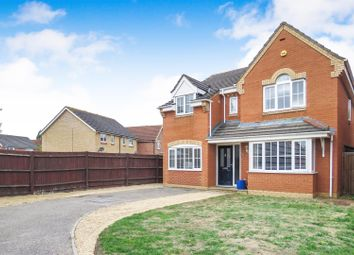 Thumbnail 4 bed detached house for sale in Lilac Grove, Biggleswade