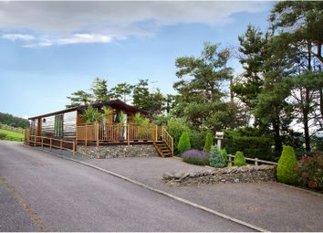 Thumbnail 2 bed lodge for sale in Old Town Mansergh, Nr. Kirkby Lonsdale
