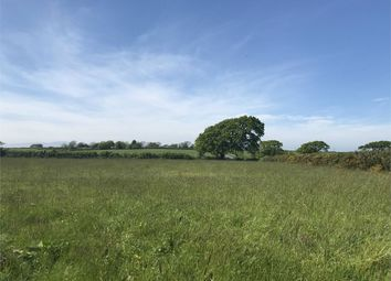 Land for sale in Land, Abbeytown, Wigton, Cumbria CA7
