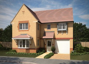 "Thumbnail 4 bed detached house for sale in ""Halstead"" at Squinter Pip Way, Bowbrook, Shrewsbury"
