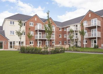 Thumbnail 1 bedroom flat for sale in South Street, South Molton