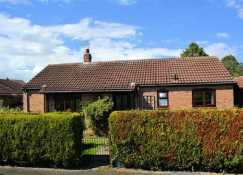 Thumbnail 3 bedroom detached bungalow for sale in Church Walk, Wistow