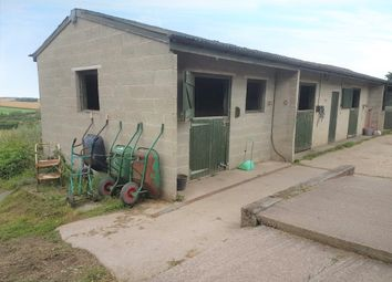 Thumbnail Equestrian property for sale in Hooton Lane, Laughton, Sheffield