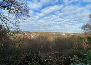 The Grove, Totley S17
