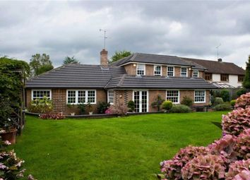Thumbnail 5 bed detached house for sale in Chorleywood Road, Loudwater, Rickmansworth