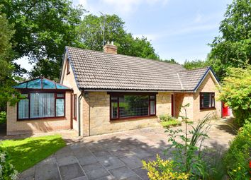 Thumbnail 4 bedroom detached bungalow to rent in Kent Road, Harrogate