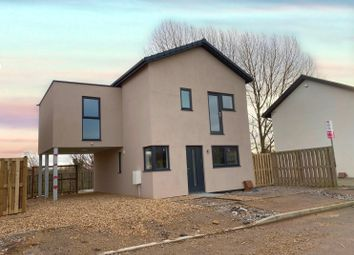 Thumbnail 3 bedroom detached house for sale in Forrest Drive, Hampton, Peterborough