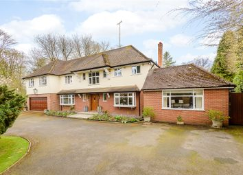 Thumbnail 5 bed detached house to rent in Frithsden Copse, Potten End, Berkhamsted, Hertfordshire