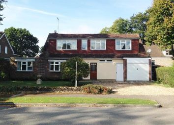 Thumbnail 5 bed detached house to rent in Windmill Hill, Biddenham, Bedford