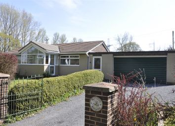 Thumbnail 3 bedroom detached bungalow for sale in Broadclyst, Exeter