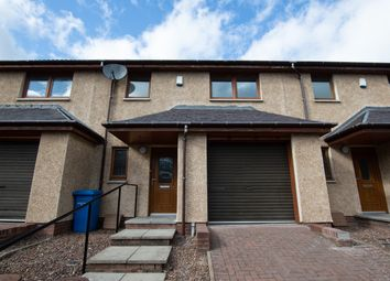 Thumbnail 3 bed terraced house for sale in Gourdie Street, Dundee