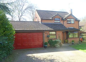 Thumbnail 4 bed detached house for sale in Malvern Drive, Dibden Purlieu
