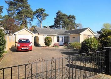 Thumbnail 2 bed bungalow for sale in Shirley Close, West Moors, Ferndown
