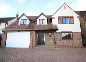 Thumbnail 4 bed property to rent in Broughton Road, Chelmsford