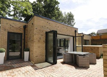 Thumbnail 3 bed detached house to rent in Burston Road, Putney