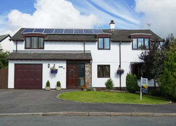 Thumbnail 4 bed property for sale in Manor Park, Bradworthy, Holsworthy