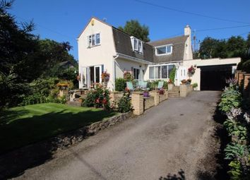 Thumbnail 3 bed detached house for sale in Bryn Coch Lane, Pantymwyn, Mold