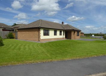 Thumbnail 4 bed bungalow to rent in Ger Y Capel, Llangain, Carmarthen