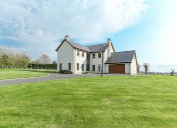 Thumbnail 5 bed detached house for sale in Lurgan Road, Dromore, County Armagh