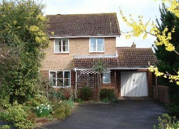 Thumbnail 4 bed detached house to rent in Fontwell Close, Fontwell, Arundel