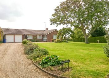 Thumbnail 3 bed detached bungalow to rent in The Street, Great Wratting, Haverhill