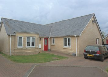 Thumbnail 3 bed detached bungalow to rent in Juniper Close, Stanway, Colchester
