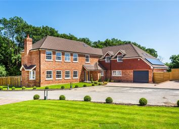 Thumbnail 6 bedroom detached house for sale in Honeypot Farm, Honeypot Lane, Edenbridge, Kent