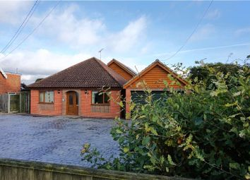 Thumbnail 5 bed detached bungalow for sale in The Green, Ashbocking