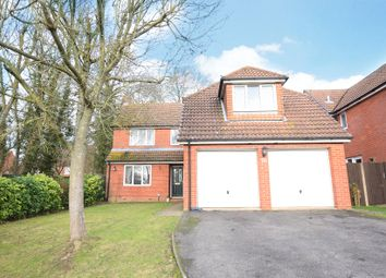 Thumbnail 4 bed detached house to rent in Roughgrove Copse, Binfield, Bracknell, Berkshire